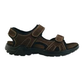American Club Američke muške sandale od kože smeđ