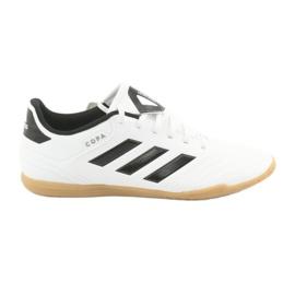 Kućne cipele adidas Copa Tango 18.4 In M CP8963