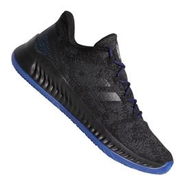 Cipele Adidas Harden B / EXM F97250