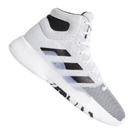 Cipele Adidas Pro Bounce Madness 2019 M BB9235 bijela bijela