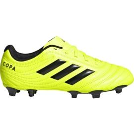 Nogometne cipele Adidas Copa 19,4 Fg Jr F35461