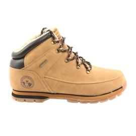 American Club ES39 cipele s čipkastim čipkama