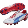 Puma Evo Speed 1 Fg M 102527 01 nogometne cipele bijela bijela 1